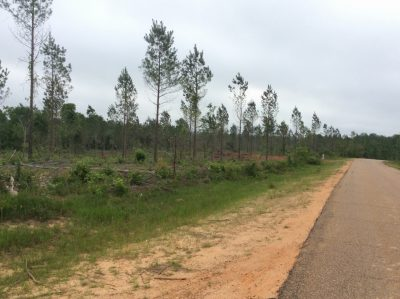 Recreational property for sale in Grant Parish