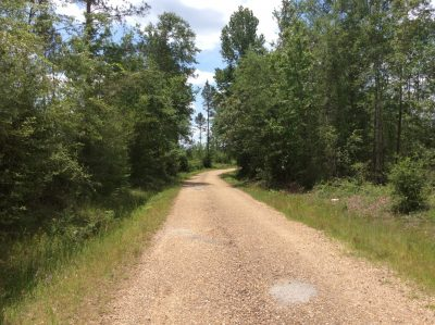 Winn Parish Recreational property for sale
