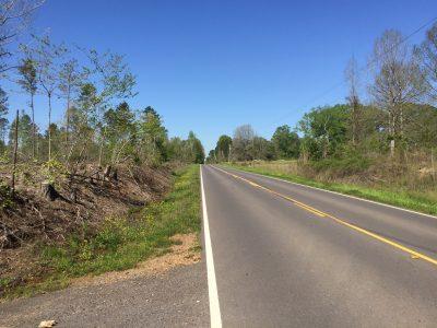 Jackson Parish Timberland for sale
