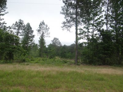 Bienville Parish Residential land for sale