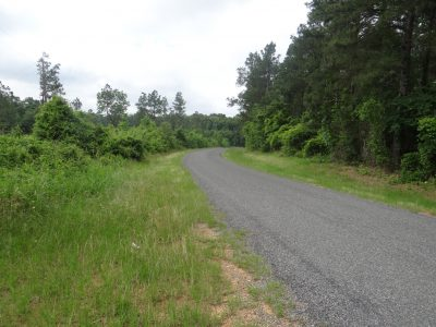Bienville Parish Investment property for sale