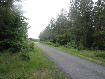 Bienville Parish Agricultural land for sale