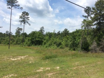 Development property for sale in Winn Parish