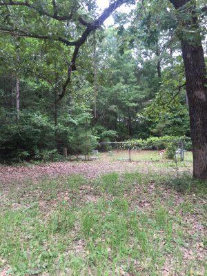 Sabine Parish Investment land for sale