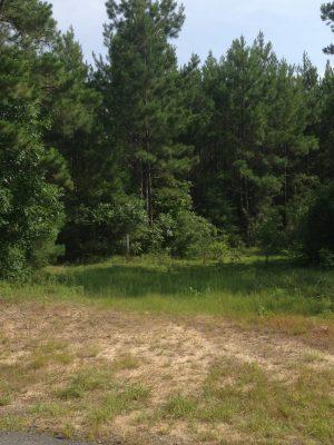 Investment property for sale in Beauregard Parish