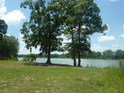 Agricultural property for sale in Catahoula Parish