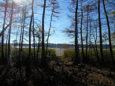 Lafayette County Recreational property for sale