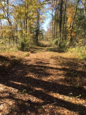 Bossier Parish Recreational property for sale