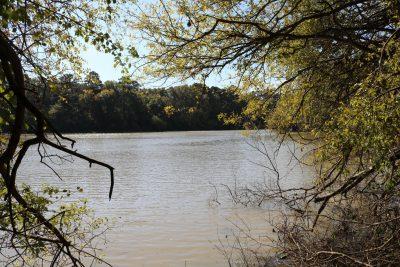 Franklin Parish Investment land for sale