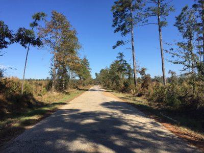 Union Parish Development property for sale