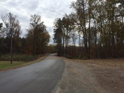 Investment land for sale in Jackson Parish