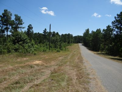 Development land for sale in Claiborne Parish
