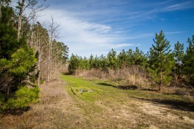 Investment property for sale in Bossier Parish