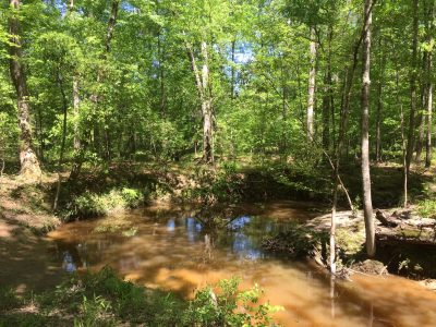 Lincoln Parish Timberland for sale