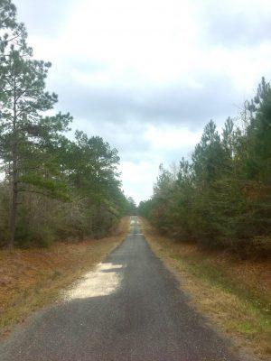 Beauregard Parish Residential property for sale