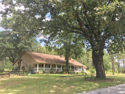 Beauregard Parish Timberland for sale