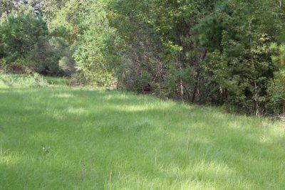 Bossier Parish Development property for sale