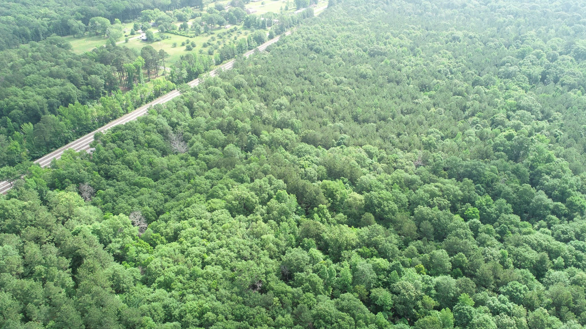 Sibley Timber Tract, Webster Parish, 18 Acres +/-