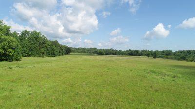 DeSoto Parish Development property for sale