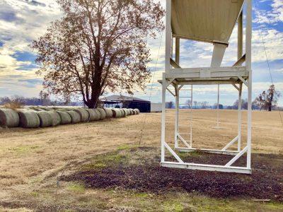Bossier Parish Pasture land for sale