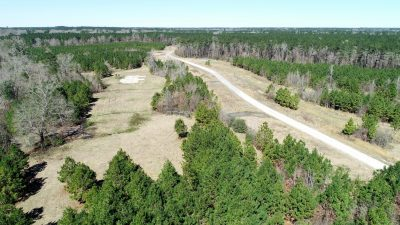 Cool Springs Tract, DeSoto Parish, 56 Acres +/- LADESOBM56