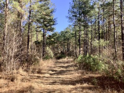 Recreational property for sale in Bossier Parish