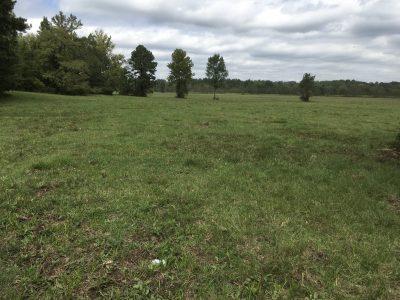 Ranchland for sale in DeSoto Parish
