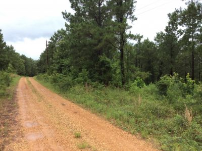 Residential property for sale in Natchitoches Parish