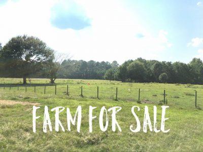Ranchland for sale in Beauregard Parish