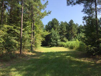 Jackson Parish Investment property for sale