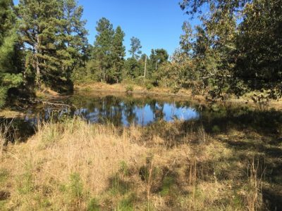 Recreational property for sale in Nevada County