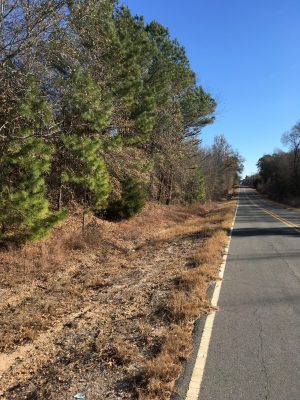 Investment land for sale in Caddo Parish