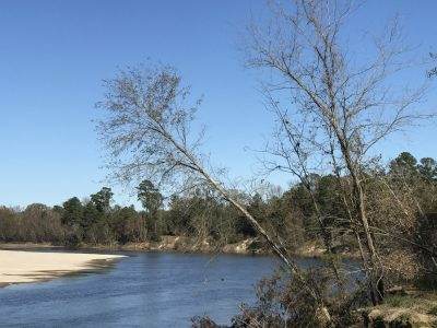 Beauregard Parish Investment property for sale