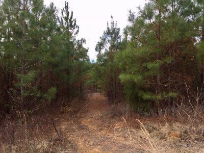 Union Parish Investment property for sale