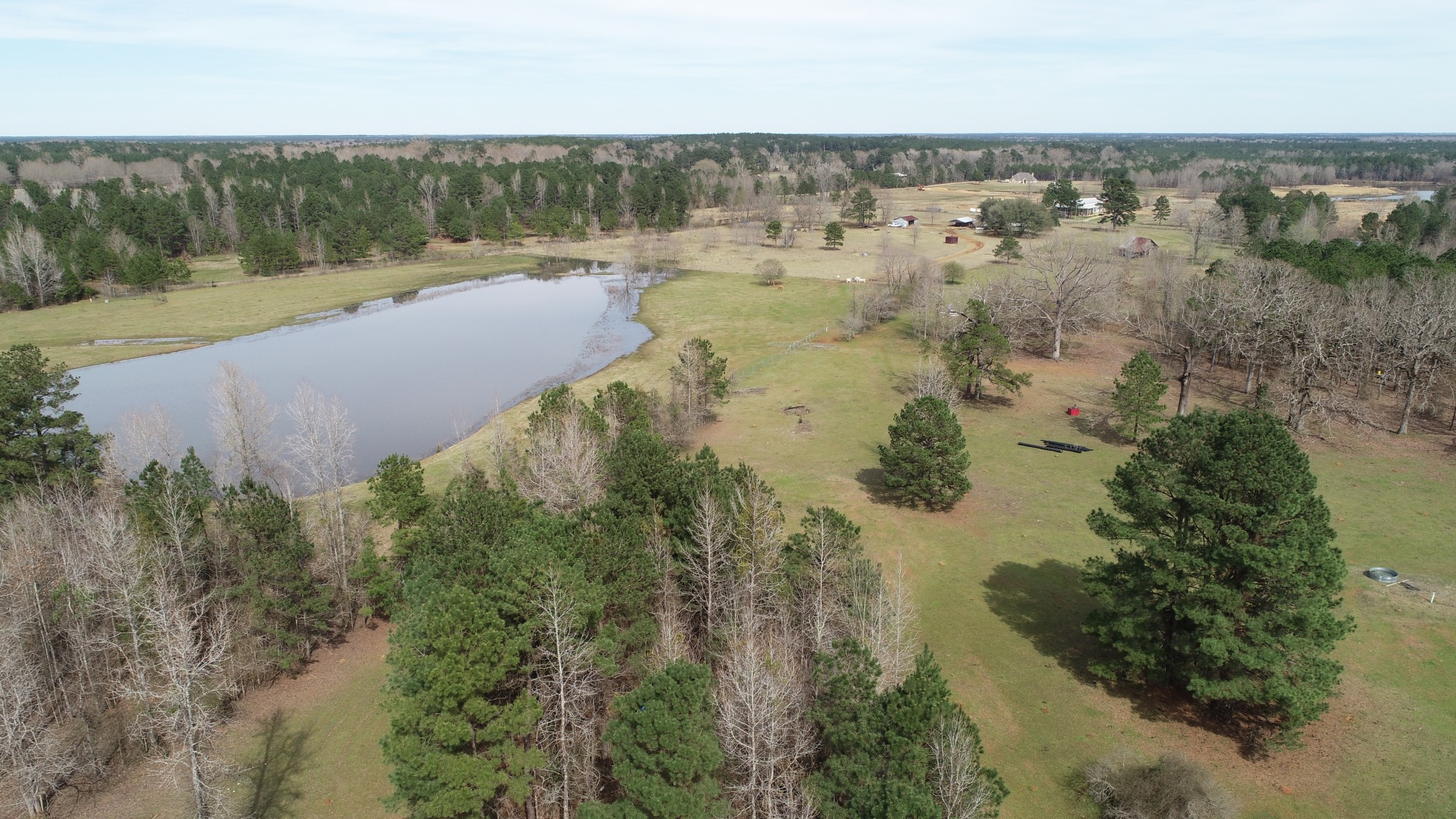 Dalrymple Pastures of Benton, Bossier Parish, 52 Acres +/-
