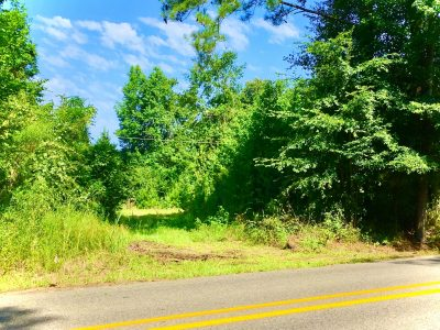 Hunting land for sale in Ouachita Parish