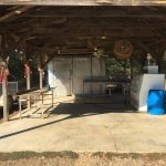 Hempstead County Timberland for sale