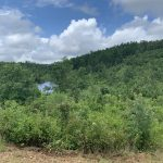 Investment land for sale in Hot Spring County