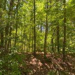 Recreational property for sale in Hot Spring County