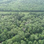 Miller County Investment property for sale