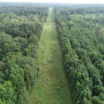 Timberland for sale in Miller County