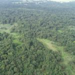 Miller County Hunting land for sale