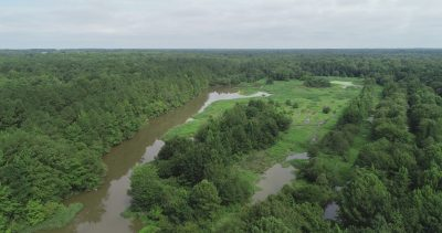 Days Creek Hunting Property, Miller County, AR, 718 Acres +/-