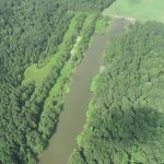 Miller County Timberland property for sale