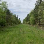 Miller County Investment land for sale