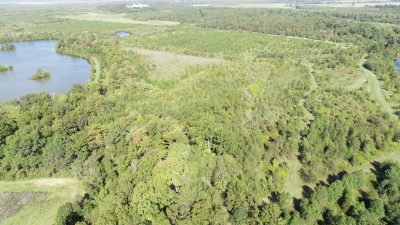 First Old River Tract, Miller County, AR 285 Acres +/-