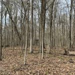 Recreational land for sale in Hempstead County