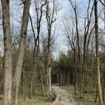 Hempstead County Recreational land for sale