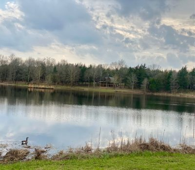Hunting property for sale in Hempstead County