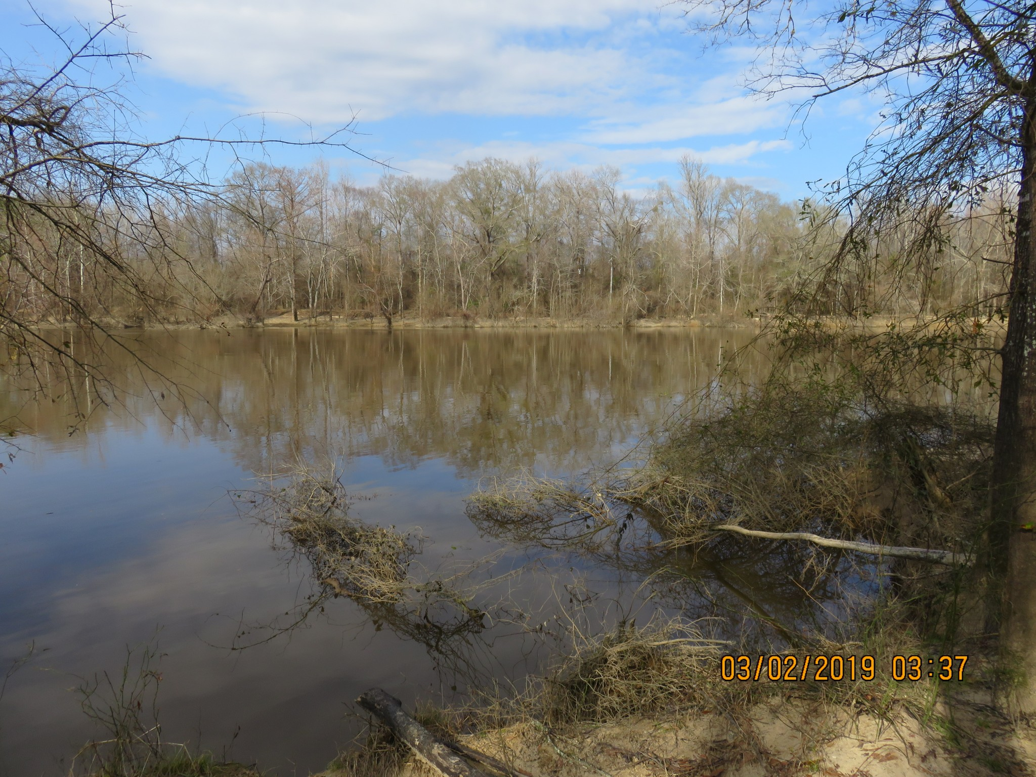 Moro Bay Tract, Union County, Arkansas, 40 Acres +/-